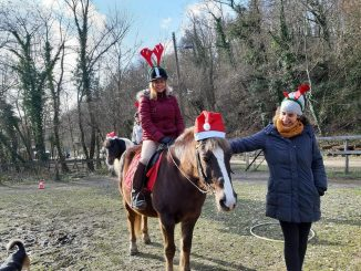 Sretan Božić i Nova 2019.godina :)