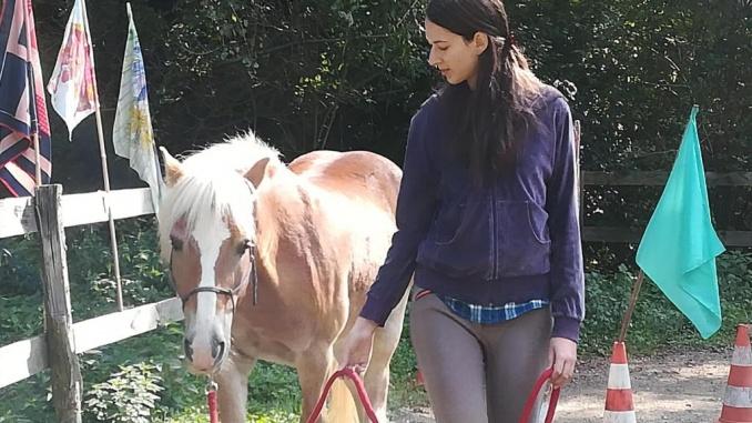 Horse Agility i Equagility radionice u udruzi Fala 29.09.2018. godine, subota s početkom u 10:00 h