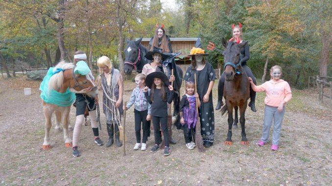 PLAYDAY - Konj Vještica