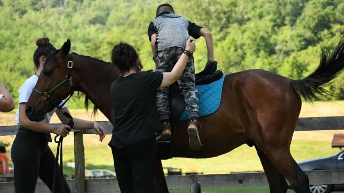 Uzjahivanje na konja 1 x