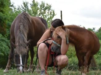 Druženje sa konjima