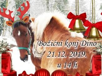 Bozicni-konj-dino