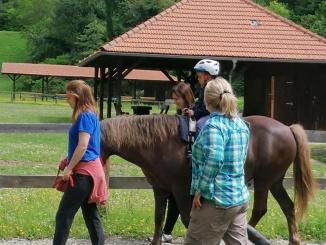 Terapija konjima
