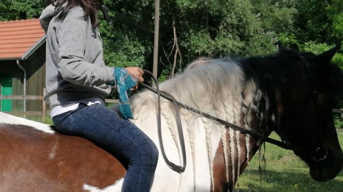 Upravljanje konjem