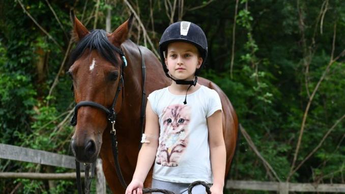 Vođenje konja