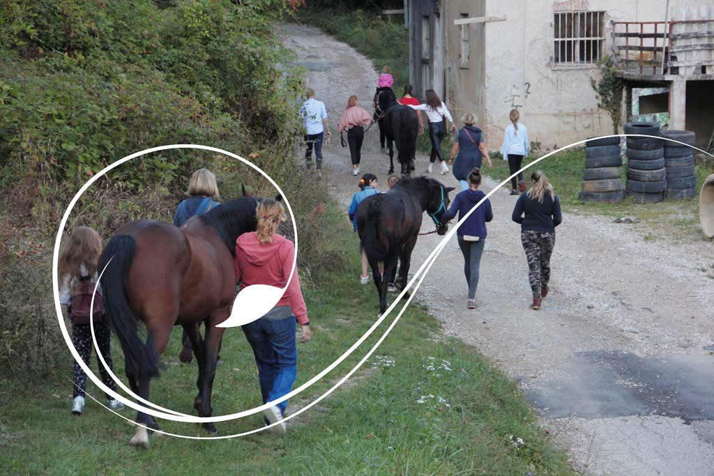 Radionica- Kako prošetati konja